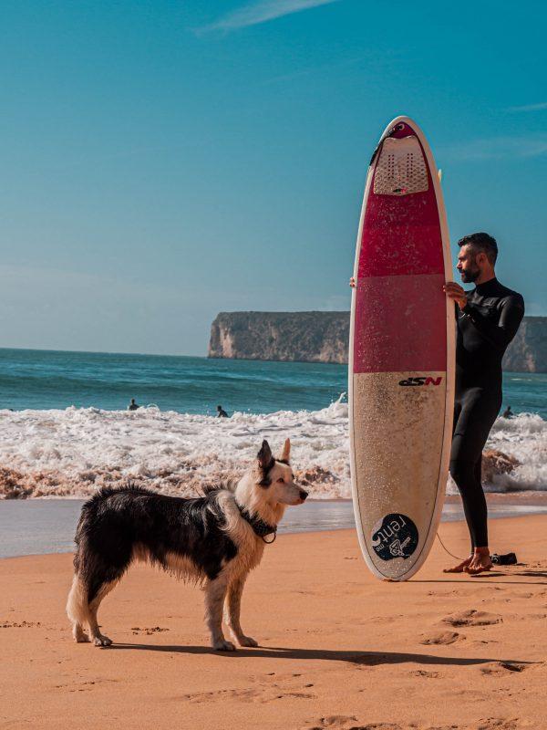 ejercicio en la playa con perro
