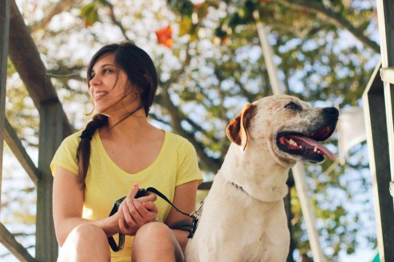 mitos sobre perros
