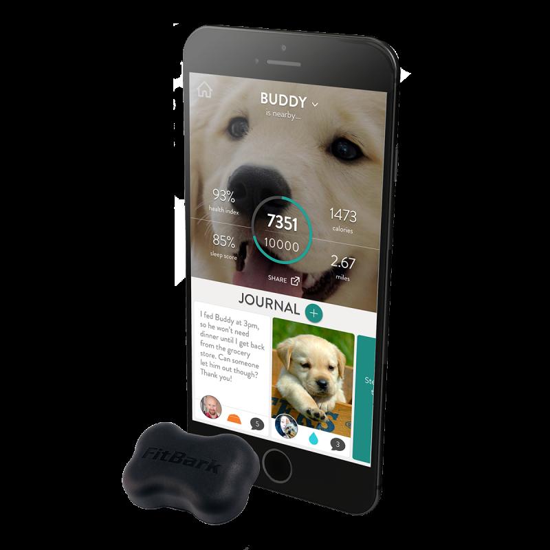 Fitbark: El monitor de actividad para mascotas