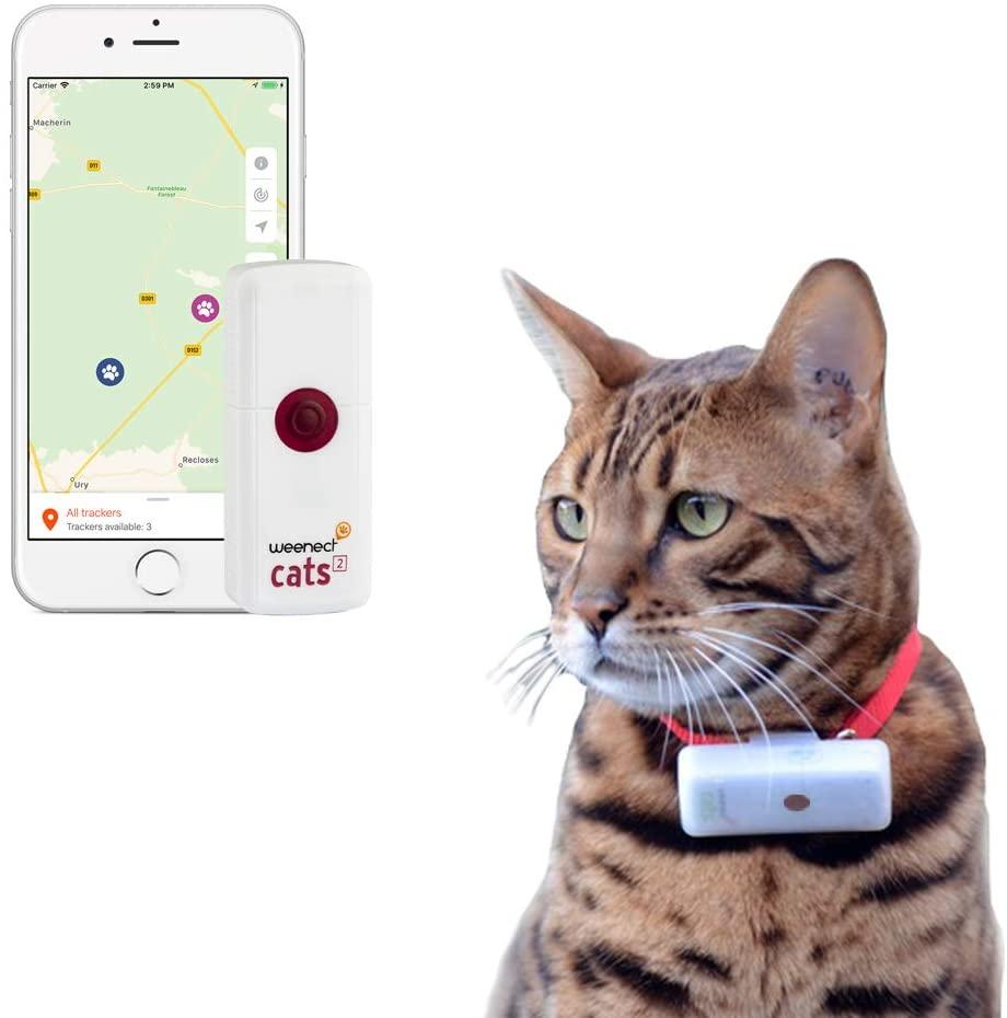 Weenect Cats 2 - El Collar GPS para Gatos pequeños