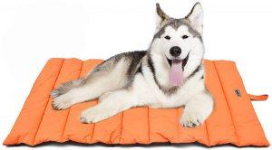 cama-verano-perro